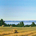 Summer At Cayuga Lake by Evelynn Eighmey