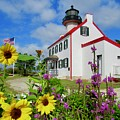 Summer At East Point Light by Nancy Patterson