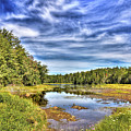 Summer At Fly Pond by David Patterson