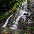 Summer At Glen Moss Falls by Shirley Whitenack
