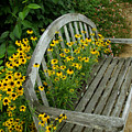 Summer Bench by Ann Keisling