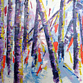 Summer Birches by Lisa Boyd
