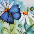 Summer Blue by Jutta Maria Pusl