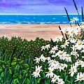 Summer Breezes Make Me Feel Fine by Jennifer Lake