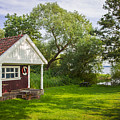 Summer Cottage by Sophie McAulay