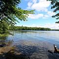 Summer Dreaming On Lake Umbagog  by Neal Eslinger