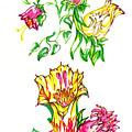Summer Flowers by Judith Herbert