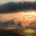 Summer Fog by Robert Potts
