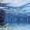Summer Fun In Maldives by Katrina Lau