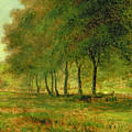 Summer by George Snr Inness
