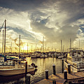 Summer Harbor Sunset by Joan McCool