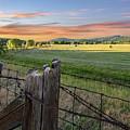 Summer Hay Bales  by Jeannee C Gannuch