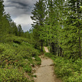 Summer Hike And Storm Clouds by Dan Sproul