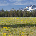 Summer In The Sawtooths by Idaho Scenic Images Linda Lantzy