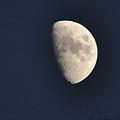 Summer Moon by Susan Cliett