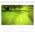 Summer Path And Tree Poster by Mike Nellums