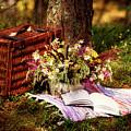 Summer Picnic by Kristine Lejniece