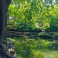 Summer Reflections At Lafayette Park by Debbie Fenelon