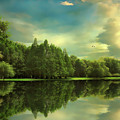 Summer Reflections by Jessica Jenney