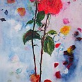 Summer Rose by Andrea Turner