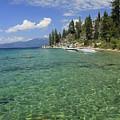 Summer Shore by Sean Sarsfield