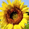 Summer Sunflower by Kathleen Struckle