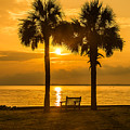 Summer Sunrise - Charleston Sc by Donnie Whitaker