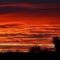 Summer Sunset 2 by Debbie Storie