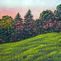Summer Sunset by Frank Wilson