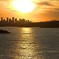 Summer Sunset In Sydney by Miroslava Jurcik