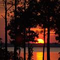 Summer Sunset by Travis Aston