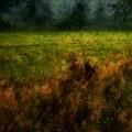 Summer Surrendering by RC DeWinter