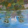 Summer Swan by Karen Lipek