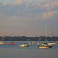 Summer Time At Little Neck Bay by Dora Sofia Caputo Photographic Design and Fine Art