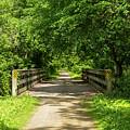 Summer Trail Scene 4 A by John Brueske
