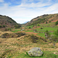 Summer, Watendlath Valley, Lake District National Park, Cumbria by Dave Porter