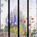 Summerscreen by Nancy  Ethiel