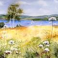 Summertime Birches by Diane Kirk
