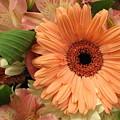 Summertime Bouquet by Dora Sofia Caputo Photographic Design and Fine Art