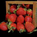 Summertime Fruit by Pamela Walton