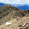 Summit On Mount Massive Summit by Steve Krull