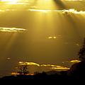 Sun 16 by Ben Yassa