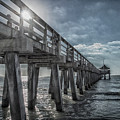 Sun And Fun In Naples Florida by Judy Hall-Folde