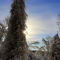 Sun And Snow  by Neal Eslinger