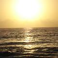 Sun At Sea by Madilyn Fox