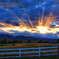 Sun Beams In The Sky At Sunset by James BO  Insogna