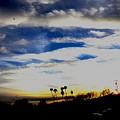 Sun Bound by Steven Canizales