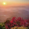 Sun Burst, Cherry Blossoms And Mountain Layers by Samyaoo