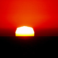 Sun Dipping by Mark Jackson