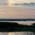 Sun Dog And Great Blue Heron 2 by Rob Graham